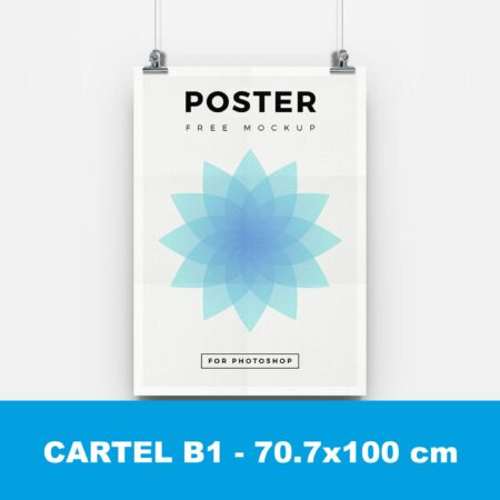 Cartel B1
