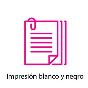 Papel de carta impresión blanco y negro