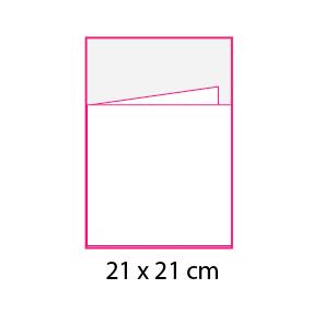 Revistas sin cubierta 21×21